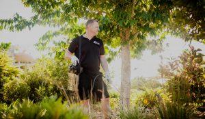 pest removal sunshine coast pest control Noosa, Bli Bli, Nambour, Buderim, Tewantin, Cooroy, Caloundra