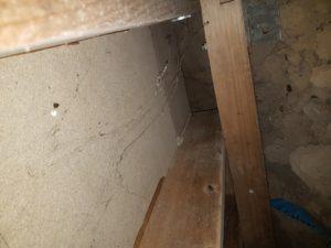 Commercial-Termite-Inspection-Sunshine-Coast