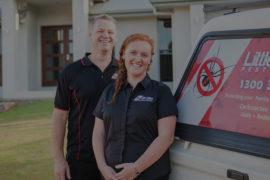 best pest control company sunshine coast qld - termite inspections and management - pest removal sunshine coast