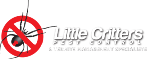 termite management noosa - pest control noosa